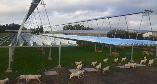Solare a concentrazione in agricoltura