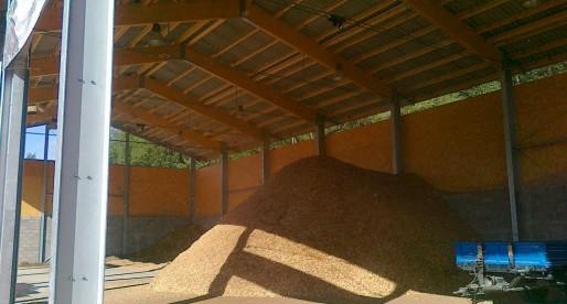 Teleriscaldamento da biomasse nel ferrarese