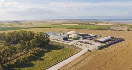 Azienda Agricola Arte