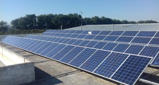 Fotovoltaico nell'agrumeto