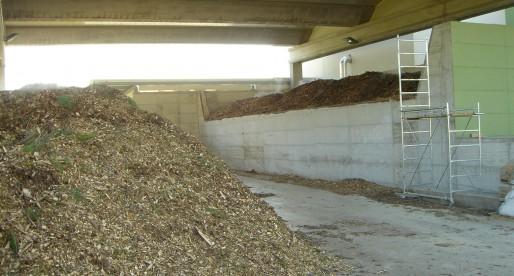 Biomasse da alvei fluviali