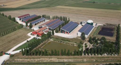 Nuova Società Agricola Trevisi