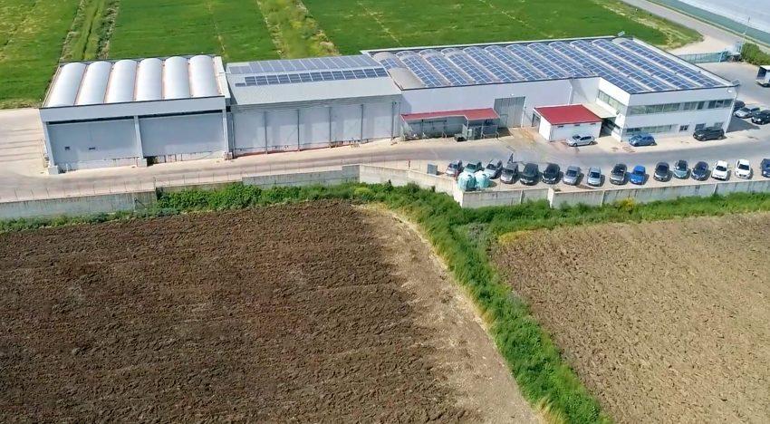 TerrAmore Società Cooperativa Agricola
